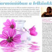 harmoniaban-cover