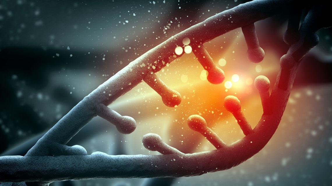 Mi a Transzgenerációs Epigenetikus Kineziológia?