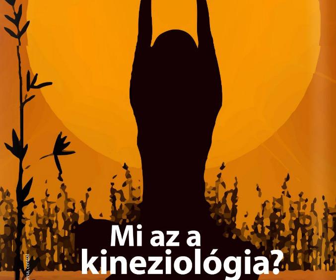 Napi elemózsia - Mi a kineziológia?