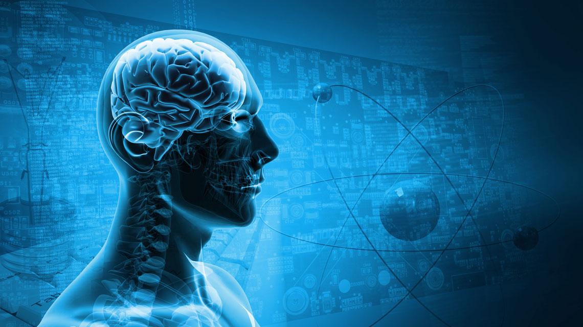 One Brain VI. tanfolyam