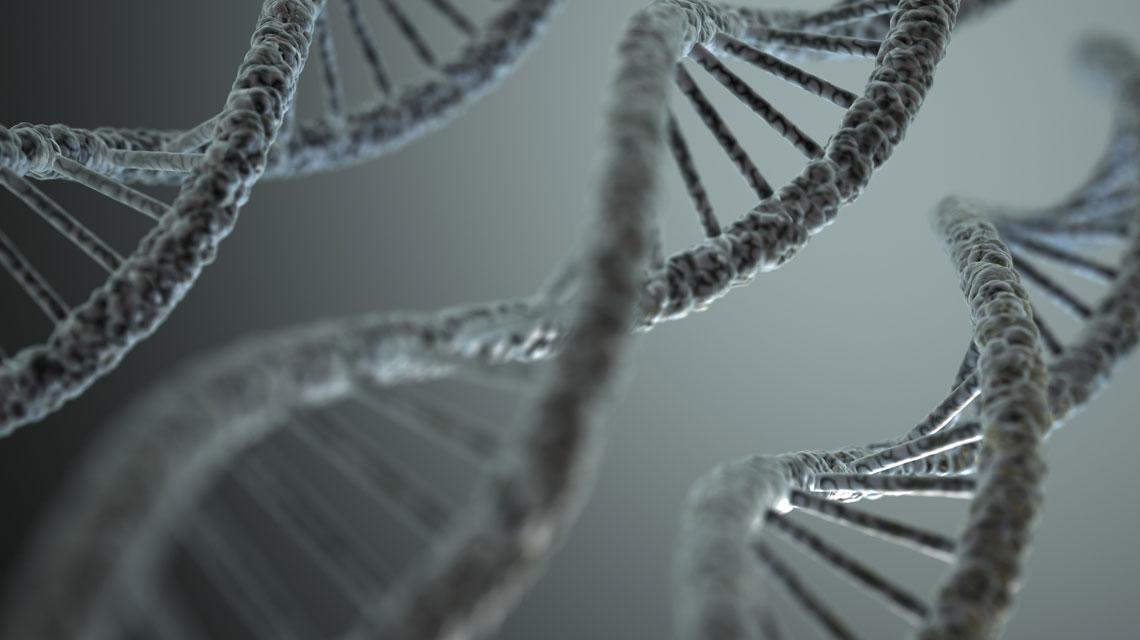 Transzgenerációs Epigenetikus Kineziológia – TEK©® I/A. szint