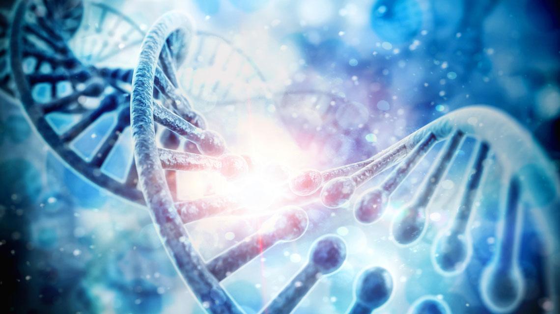 Transzgenerációs Epigenetikus Kineziológia – TEK©® I/B. szint