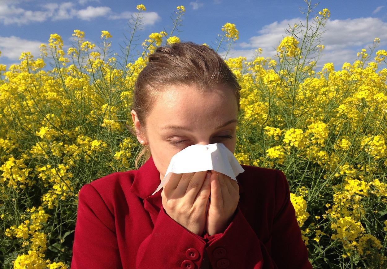 Allergia - avagy a sértődött lélek kiáltása